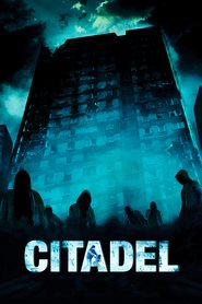 Citadel is similar to 8 Million Ways to Die.