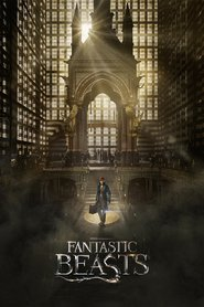 Fantastic Beasts and Where to Find Them images, cast and synopsis