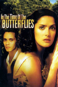 In the Time of the Butterflies is similar to A Mario.