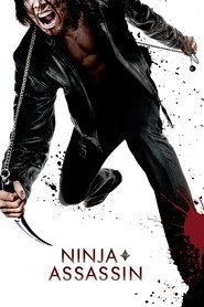 Ninja Assassin is similar to John Wick.