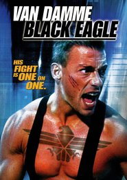 Black Eagle is similar to Murder on Flight 502.