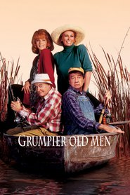 Grumpier Old Men is similar to Vincent will Meer.