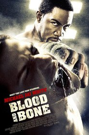 Blood and Bone is similar to The Grand Budapest Hotel.