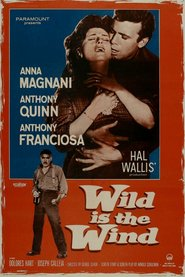 Wild Is the Wind is similar to '71.