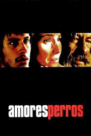 Amores perros is similar to Guerrilla Distribution.