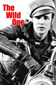 The Wild One is similar to Michiel de Ruyter.