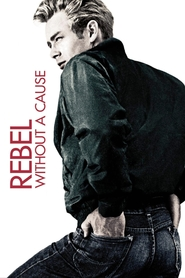 Rebel Without a Cause is similar to The Sum of All Fears.