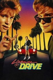 License to Drive is similar to 12 Rounds 3: Lockdown.