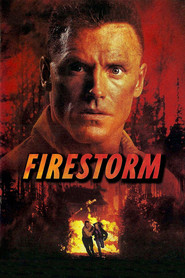 Firestorm is similar to Ruben Guthrie.