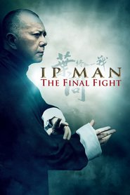 Ip Man: The Final Fight is similar to Patsientyi.