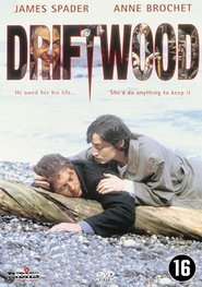 Driftwood is similar to Diary of a Wimpy Kid: Rodrick Rules.