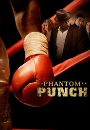 Phantom Punch is similar to Shadow Island Mysteries: The Last Christmas.