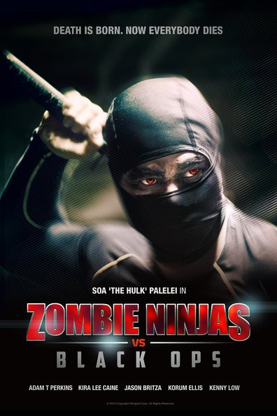 Movies Zombie Ninjas vs Black Ops poster