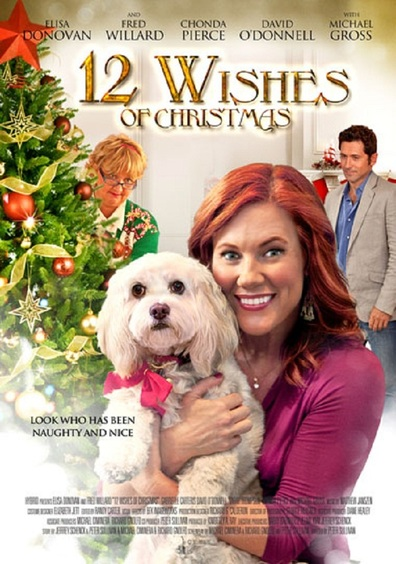 12 Wishes of Christmas cast, synopsis, trailer and photos.