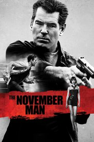 The November Man is similar to The Gunman.