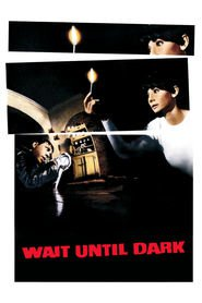 Wait Until Dark is similar to The Intruders.