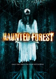 Haunted Forest is similar to Dorogi.