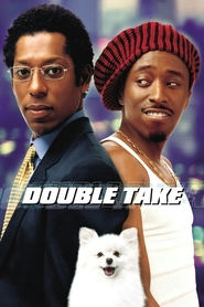 Double Take is similar to Rush Hour 2.
