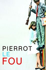 Pierrot le fou is similar to A Ring of Endless Light	.