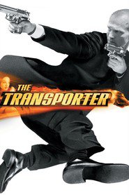 The Transporter is similar to The Art of Action: Martial Arts in Motion Picture.