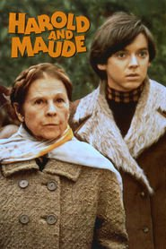 Harold and Maude is similar to What Dreams May Come.