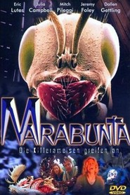 Marabunta is similar to I Heart Huckabees.