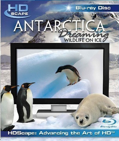 Antarctica Dreaming - WildLife On Ice is similar to The Rutles 2: Can't Buy Me Lunch.