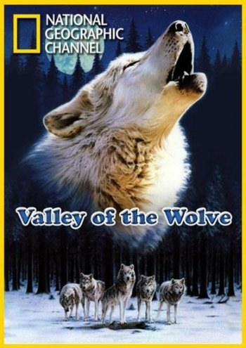 Valley of the Wolves is similar to Screening.