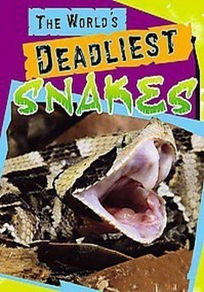 World's Deadliest Snakes is similar to Stand Up Guys.