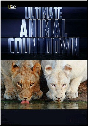 Ultimate Animal Countdown: Soldiers is similar to La despedida.