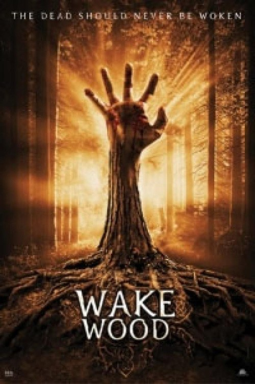 Movies Wake Wood poster