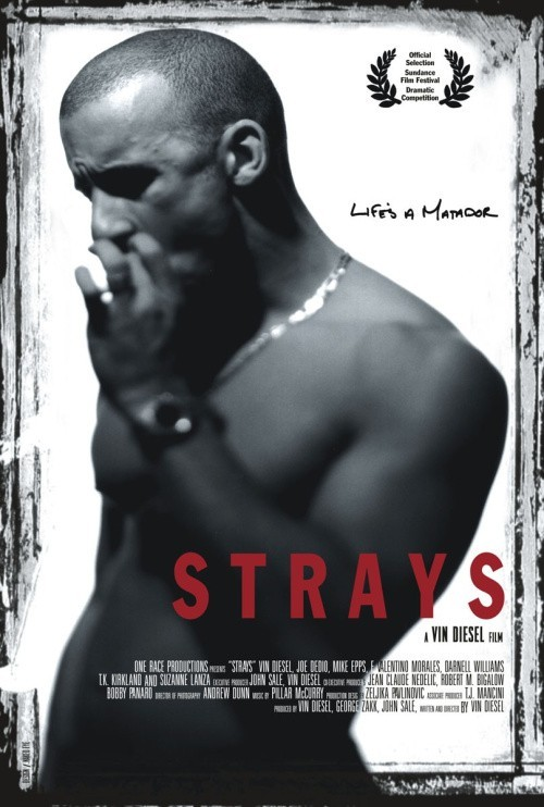 Strays is similar to What Dreams May Come.