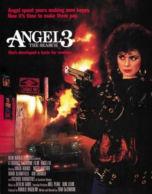 Angel III: The Final Chapter	 is similar to Brudguminn.
